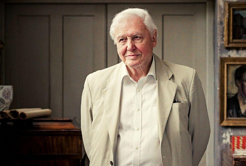 95 éves David Attenborough
